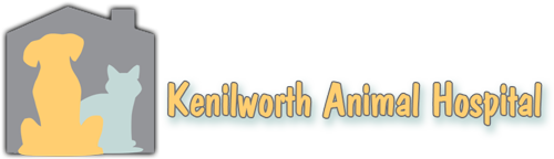 Kenilworth Animal Hospital